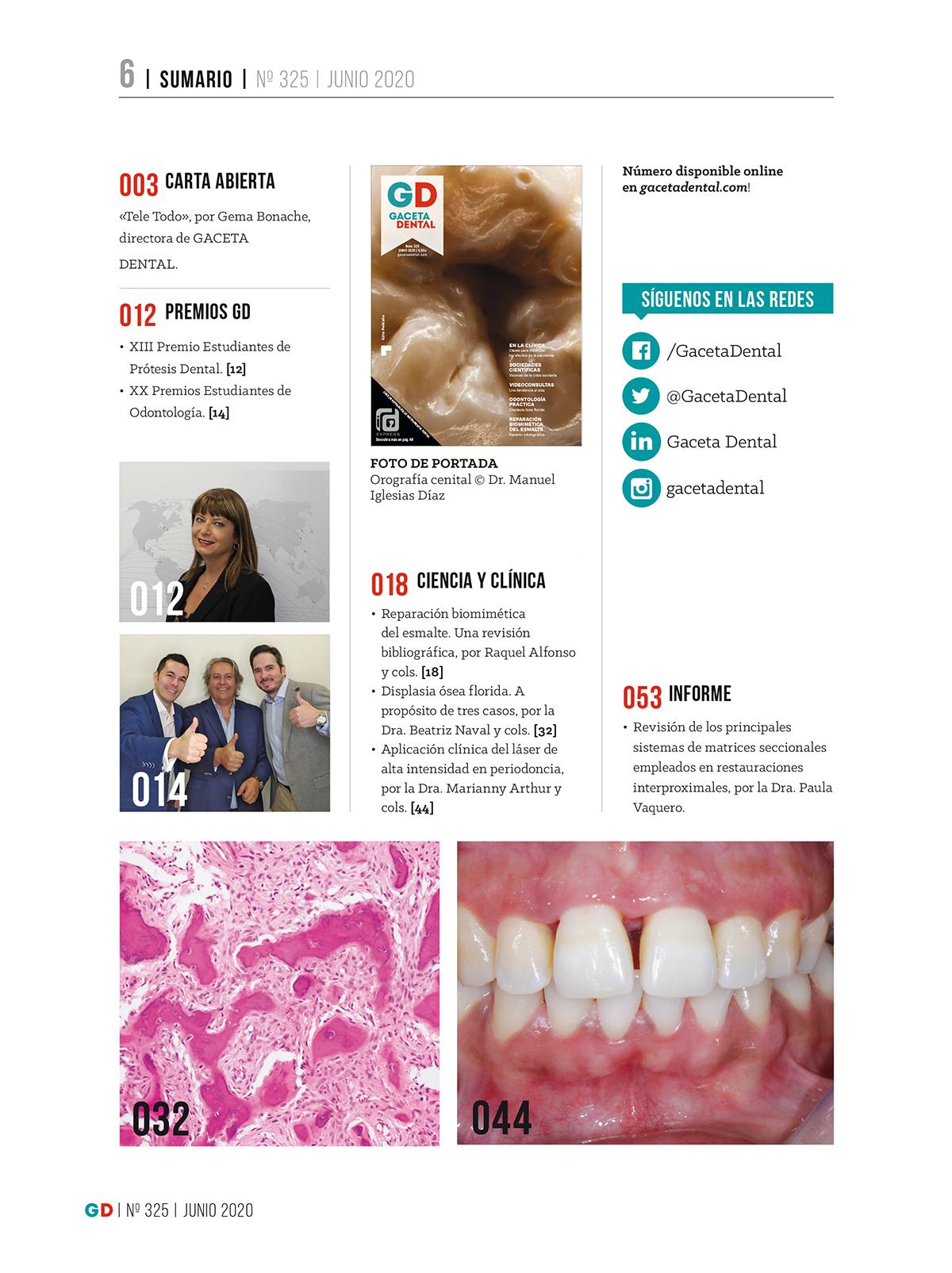 Gaceta Dental Nº 325